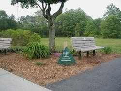Benches in park